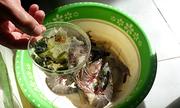 Thanh Hóa phát hiện tôm bơm tạp chất tại điểm kinh doanh hải sản