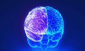 10 dấu hiệu ở người có trí thông minh
