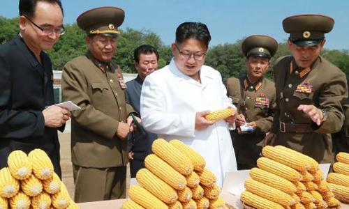 Lãnh đạo Kim Jong-un đi thị sát tại một trang trại ở Triều Tiên. Ảnh: KCNA.