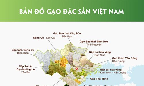 Bản đồ các loại gạo đặc sản ở Việt Nam