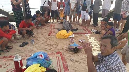Ngư dân tổ chức lễ tang cho cá heo. Ảnh: Minh Ngọc