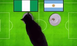 'Tiên tri' động vật chọn Pháp thắng, Messi về nước