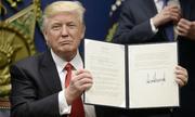 Chiến thắng chứa nhiều âu lo của Trump trong lệnh cấm nhập cảnh