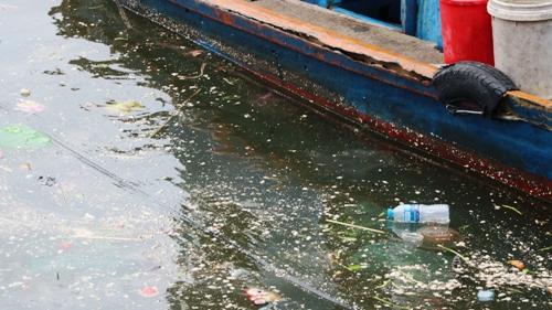 Mặc dù đã được các công nhân Ban quản lý vịnh Cát Bà mỗi ngày thu gom, vớt rác 3 lần nhưng lượng rác vẫn tràn ngập trên mặt nước. Ảnh: Giang Chinh