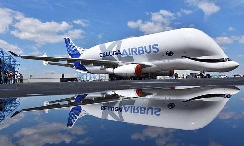 Siêu máy bay vận tải hình cá heo trắng của Airbus