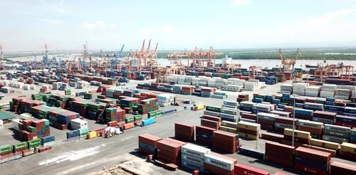 Chỉ tính tiêng chi nhánh cảng Tân Vũ thuộc Công ty cổ phần Cảng Hải Phòng hiện đã có hơn 500 container phế liệu tồn nhiều năm nay, trong khi đó nhà chức trách chưa có giải pháp xử lý. Ảnh: Giang Chinh