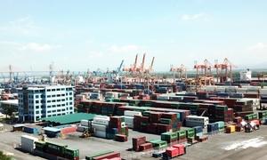 Hàng nghìn container phế liệu tồn tại cảng Hải Phòng