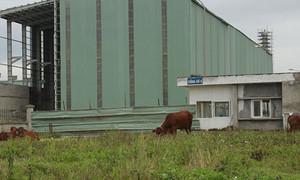 Cựu tổng giám đốc dự án Ethanol Phú Thọ bị bắt