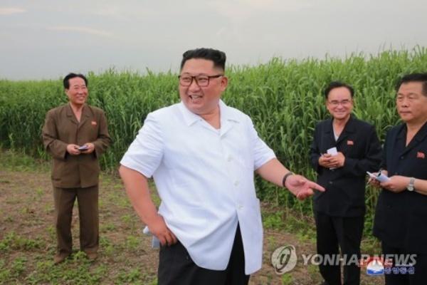 Lãnh đạo Kim trong chuyến thị sát trang trại trồng sậy ở .