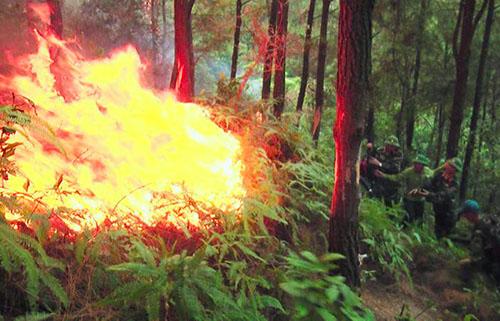 Lực lượng chức năng tham gia dập lửa. Ảnh: Ngọc Thanh