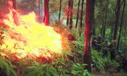 Cháy rừng suốt 11 tiếng ở Hà Tĩnh