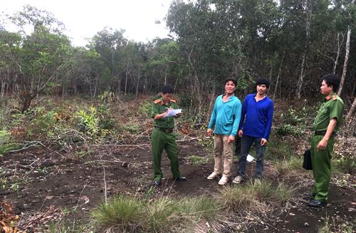 Nhiều diện tích rừng bị phá để lấy đất phân lô, bán nền được phát hiện ở Phú Quốc. Ảnh: Phúc Hưng.