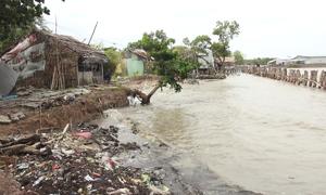 Cà Mau và Kiên Giang đề xuất ứng cứu khẩn cấp đê biển sạt lở