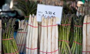 3 loại măng tây được trồng nhiều tại Mỹ