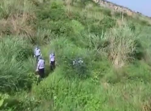 Thi thể nạn nhân được phát hiện giữa bụi cỏ bên đường mòn.