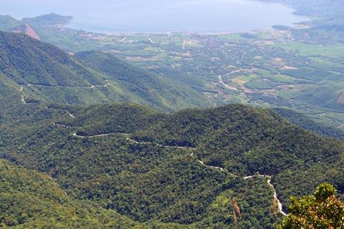 Từng cánh rừng vườn Quốc gia Bạch Mã anh Cảm đều hiểu rõ. Ảnh: Võ Thạnh