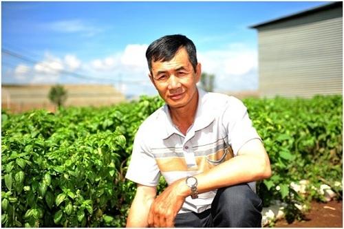 Ông Nguyễn Văn Phúc bắt đầu tham gia tổ hợp tác rau an toàn cung cấp cho MM Mega Market Việt Nam từ năm 2007