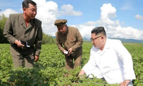 Lãnh đạo Triều Tiên Kim Jong-un thăm trang trại Junghun ở quận Samjiyon trong bức ảnh được Cơ quan Thông tấn Trung ương Hàn Quốc (KCNA) công bố ngày 10/7. Ảnh: KCNA/Reuters.