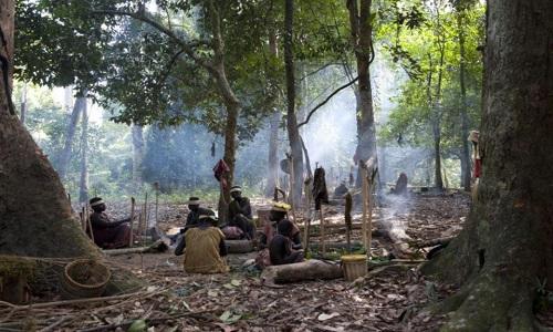 Người Jarawa sống du mụcdựa vào nguồn thức ăn từ rừng và biển. Ảnh: Claire Beilvert.