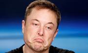 Elon Musk nghi ngờ chuyên môn của chỉ huy chiến dịch cứu hộ đội bóng nhí