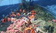 Trung Quốc giận dữ vì bình luận của Phó thủ tướng Thái Lan trong vụ chìm tàu