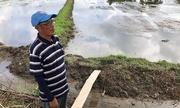 Nông dân Thái Lan từ chối nhận bồi thường sau cuộc giải cứu đội bóng nhí