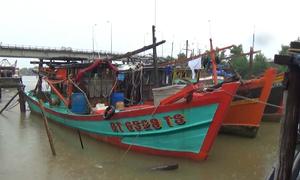 Dự báo áp thấp mạnh thành bão, đổ bộ từ Thanh Hóa đến Hà Tĩnh
