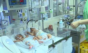 Hà Nội chấn chỉnh công tác giao nhận trẻ sơ sinh trong cơ sở y tế
