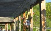 Người đàn ông Trung Quốc lộn ngược đầu đi bằng dây thừng