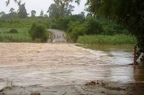 Nhiều tuyến quốc lộ và tỉnh lộ ở Nghệ An bị nước chia cắt.