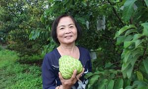 Người phụ nữ Đồng Nai trồng thành công mãng cầu hạt lép