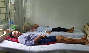 4 người ở Hà Tĩnh nhập viện vì ăn phải nấm độc