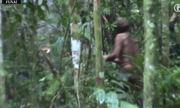 Người sống sót cuối cùng của một bộ lạc trong rừng Amazon