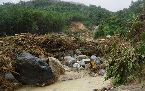 Dùng suối Hin Pun ngổn ngang cây cối và đá tảng sau trận lũ đêm 19/7. Ảnh: Lê Hoàng.