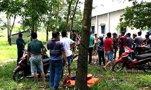 Thi thể phụ nữ trong bao tải vứt ở lô cao su Bình Phước