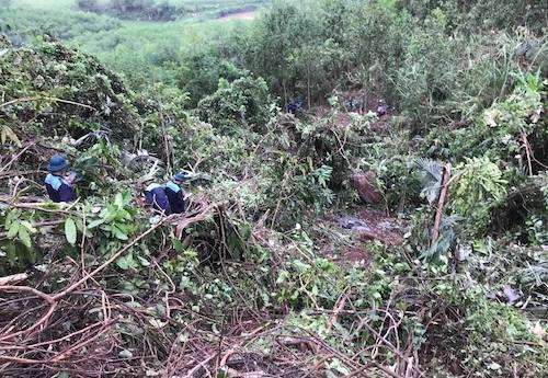 Lực lượng cứu hộ tại hiện trường máy bay rơi.