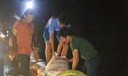 Hàng trăm người dầm mưa hộ đê ở Hà Nội trong đêm