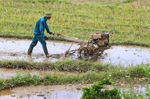 Nông dân xã Yên Trung đã có phương tiện cơ giới hoá. Ảnh: Ngọc Thành.