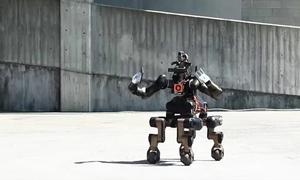 Robot 4 chân hỗ trợ cứu người trong thảm họa