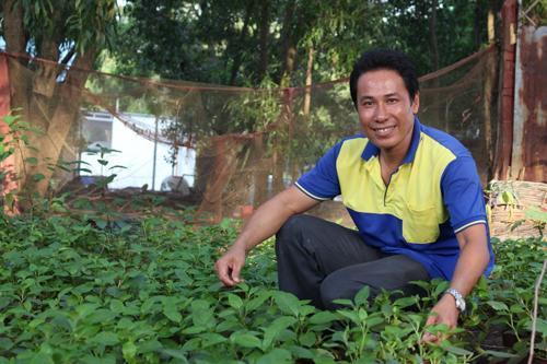 Anh Hoàng bên vườn rau thuốc là thức ăn cho gà. Ảnh: Xuân Chinh