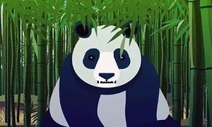 Nguy cơ tuyệt chủng vì rừng tre chết hàng loạt của gấu trúc