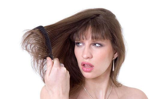 Mái tóc cũng cần được chăm sóc đúng cách để khỏe mạnh