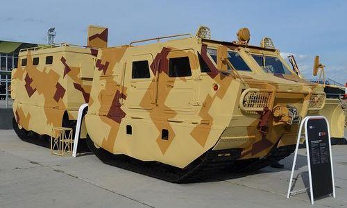 Xe vận tải DT-3PM được trưng bày hồi năm 2017. Ảnh: TASS.