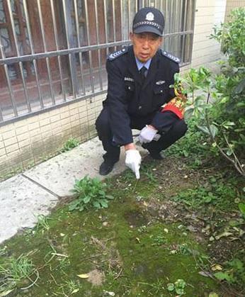 Bé gái rơi xuống bãi cỏ và đất khá mềm do ngấm nước mưa từ trước. Ảnh: Shanghaiist.