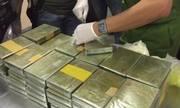 Những đường dây ma túy khủng bị triệt phá trong 7 tháng đầu năm