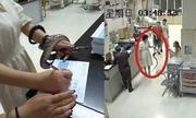 Cô gái Trung Quốc tự bắt rắn mang tới bệnh viện sau khi bị cắn