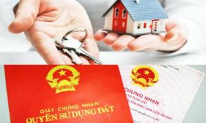 'Tiền bạc là quyền lực duy nhất của cha mẹ Việt khi về già'