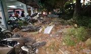 Người Indonesia bỏ chạy, bị chóng mặt khi động đất xảy ra