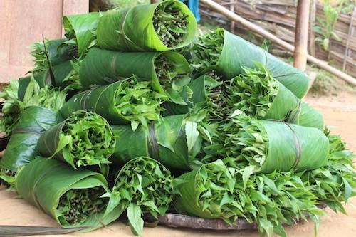 Rau lủi nguồn gốc là rau rừng, nhiều công dụng cho sức khỏe. Ảnh: Xuân Chinh