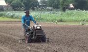 Máy gieo đậu phộng tự động của nông dân miền Tây